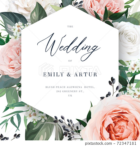 Modern vector floral wedding invite card template. Blush peach, dusty pink, white garden Rose flowers, Eucalyptus greenery, berry and green forest leaves watercolor illustration with geometrical frame 72347181