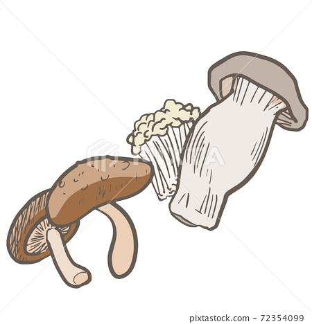 膳食纖維豐富的蔬菜和蘑菇 72354099