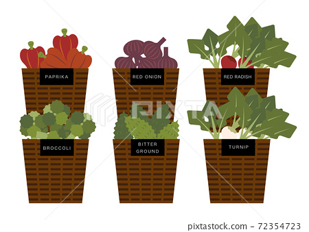 蔬菜在籃子裡的插圖 72354723