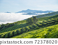The morning at Cau Dat tea farm at Lam Dong province. This is one of the famous tourist attraction at Da Lat, Viet Nam. 72378020