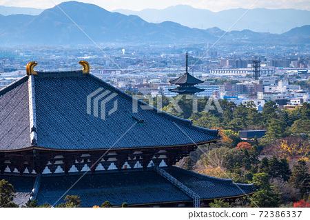 《奈良縣》東大寺/奈良都市風景 72386337