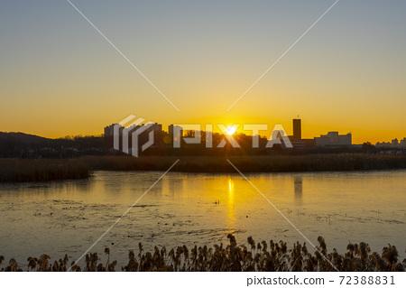 화랑호수,안산시,경기도 72388831