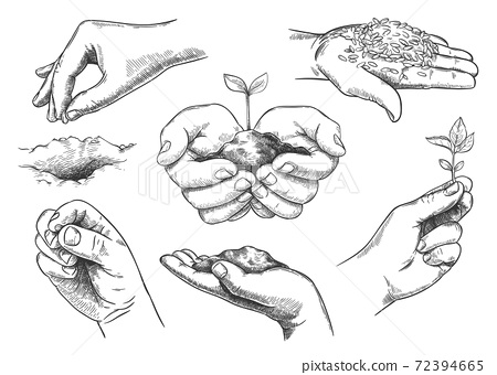 Hands with plant sprout. Farmer hand holding soil and planting seeds. Save nature, grow new trees. Agriculture and ecology sketch vector set 72394665