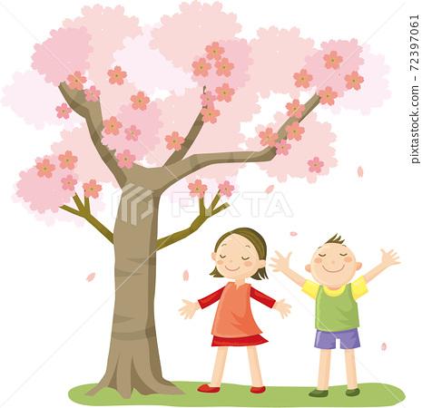 벚꽃 나무와 아이 72397061