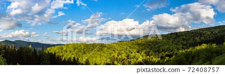 Carpathians mountain forest 72408757