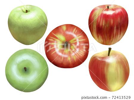 現實的紅蘋果和綠蘋果設置沒有線條藝術 72413529