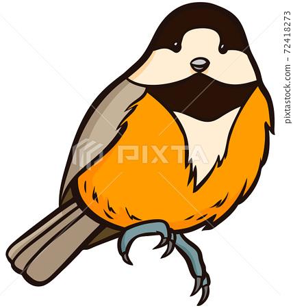 山鳥野生鳥的插圖 72418273
