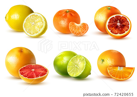 Citrus Fruit Set 72420655