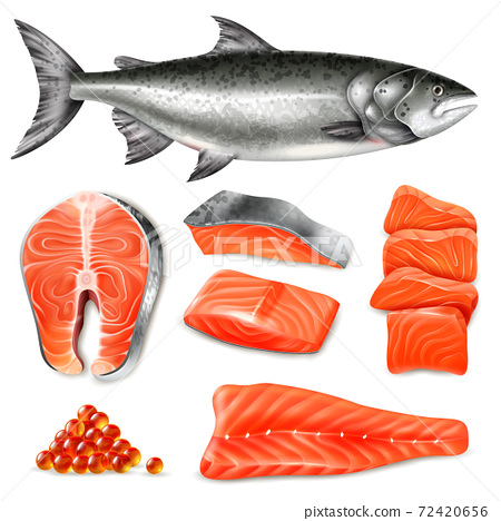Realistic Salmon Set 72420656