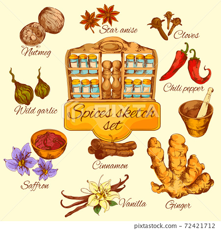 Spices Sketch Colored 72421712