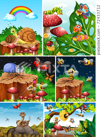 Set of different insects living in the garden background 72433712