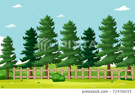 Empty background nature park scenery 72436035
