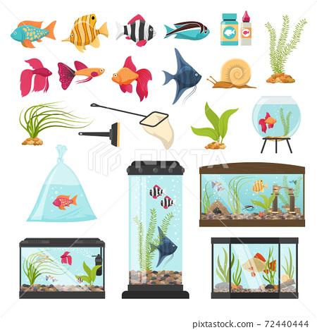 Aquarium Essential Elements Collection 72440444