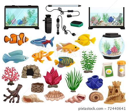 Aquaristics And Aquarium Fishes Set 72440641