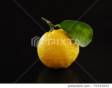 柚子黑色背景 72443642