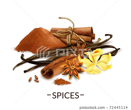 Realistic Spices Set 72445114