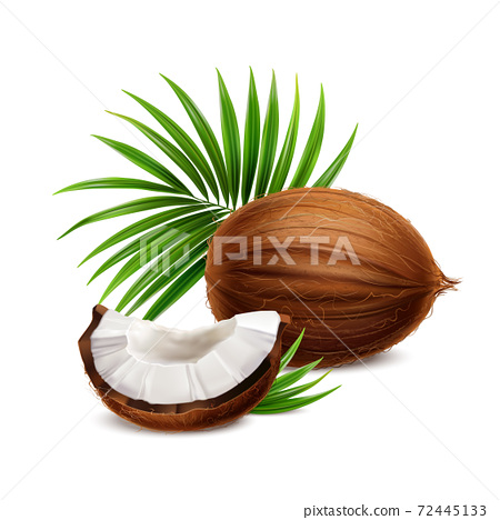 Coconut Realistic Image 72445133