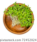 Hemp microcreens in a wooden bowl. Ready to eat green sprouts of industrial hemp. Shoots, seedlings and young plants of Cannabis sativa. Close-up, from above, isolated over white, macro food photo. 72452024