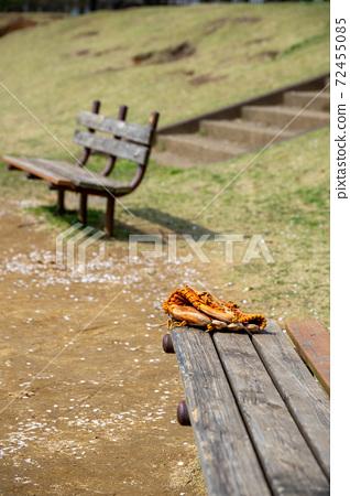 公園長椅 72455085