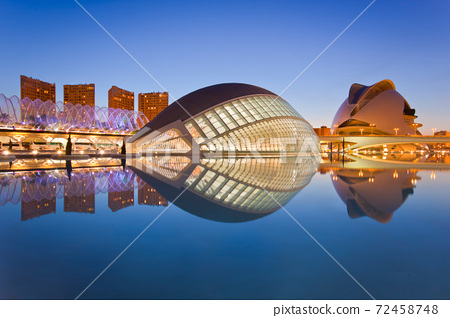 Valencia's City of Arts and Science Museum 72458748