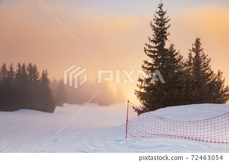 Mist covered trees in the mountains 72463054