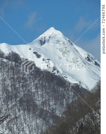 雪中竹岳(垂直) 72466798