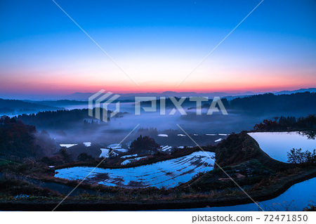 《Niigata Prefecture》 Hoshitoge Rice Terraces, Sea of Clouds Twilight 72471850