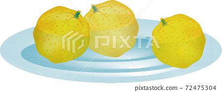 冬季柚子柚子柚水果水彩插圖素材 72475304