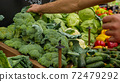 Close-up hands of grocery worker is arranging vegetables on store shelves. 72479292