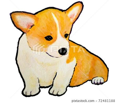 Sitting corgi puppy 72481188