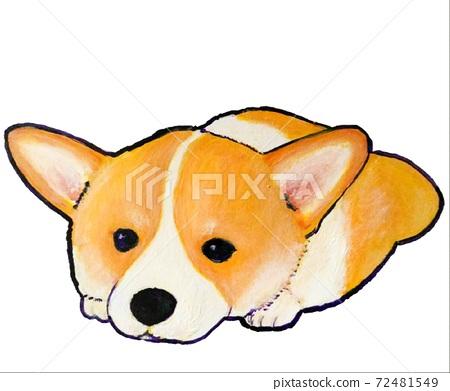 柯基犬圖片小狗休息 72481549