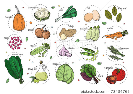 Sketch of different vegetables. Recipe stickers. Set of vegetables isolated on a white background. 72484762