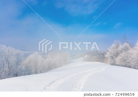 trees in mist on a snow covered hill. fairy tale winter mountain scenery. frosty weather on a sunny morning 72499659