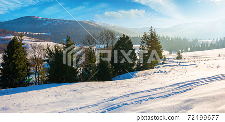 mountainous rural landscape in wintertime. wonderful frosty sunny day. trees on the snow covered hills. 72499677