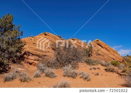 Beautiful landscape around Wire Pass Trail 72501022