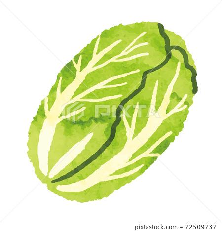 水彩風格中國蔬菜插畫素材 72509737