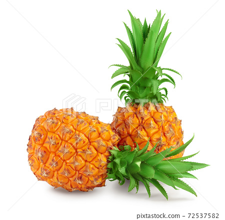 pineapple isolated on white background with clipping path and full depth of field 72537582