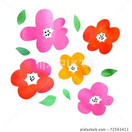 수채화 질감의 화려한 꽃 72563411