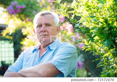 Senior man in light blue striped shirt near lush green bush 72572070