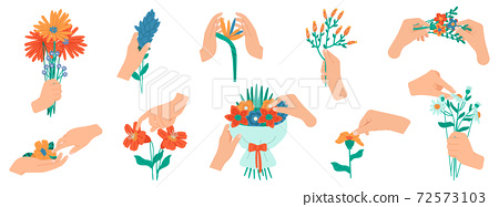 Hands holding flowers. Flowering bouquet in female hands, bunches of blooming flowers. Floral hand drawn elements vector illustration set 72573103