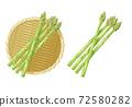 蘆筍的插圖 72580282