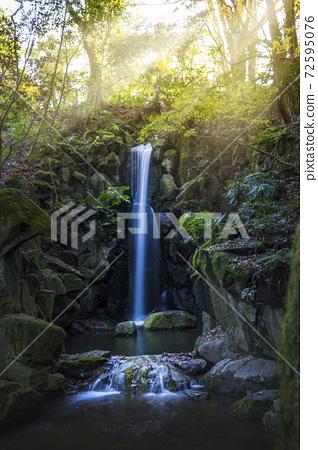 成田山公园 72595076