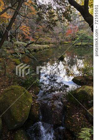 成田山公园 72595081