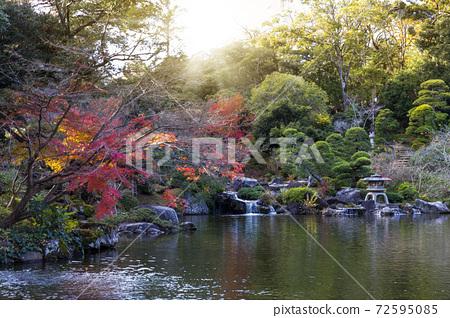 成田山公园 72595085