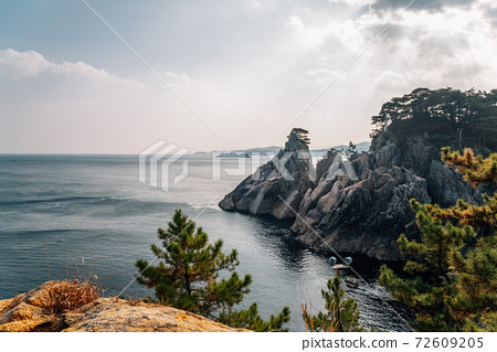 Hajodae sea and rocky cliffs with pine trees in Yangyang, Korea 72609205