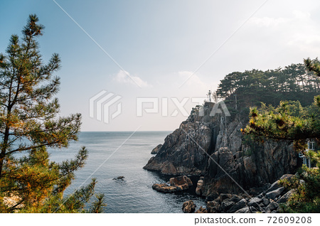Hajodae sea and rocky cliffs with pine trees in Yangyang, Korea 72609208