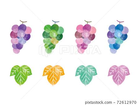 Grape_single_watercolor 72612970