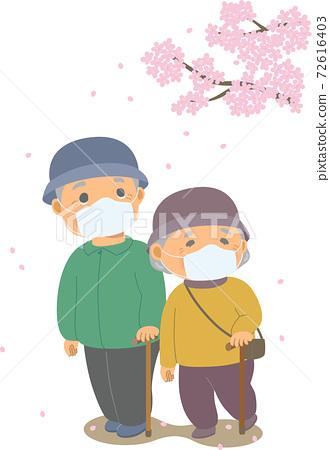 벚꽃을 보면서 산책을하고있는 마스크를 붙인 노부부 72616403