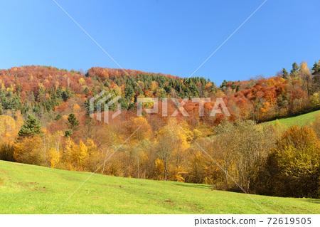 Autumn landscape 72619505