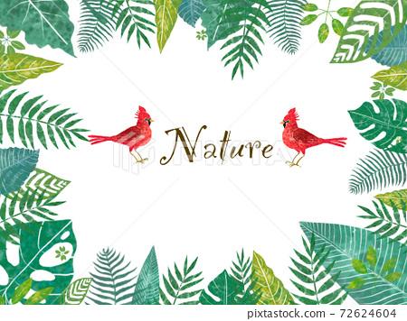 紅鳥和熱帶樹葉的框架插圖 72624604